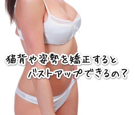 shisei546