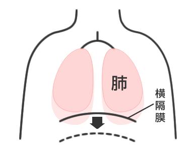 fukushiki1